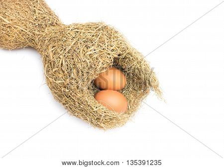 Skylark Nests and bird eggs,Close up Baya weaver bird nest, skylark nests on white background.(select focus front skylark nests )