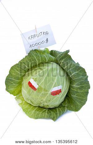 Kapustka from Poland - cabbage with Polish flag isolated on white background
