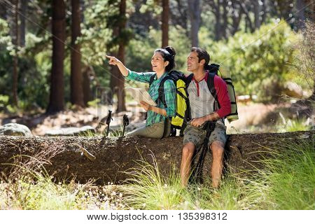 Couple pointing and sitting on a tree on the wood