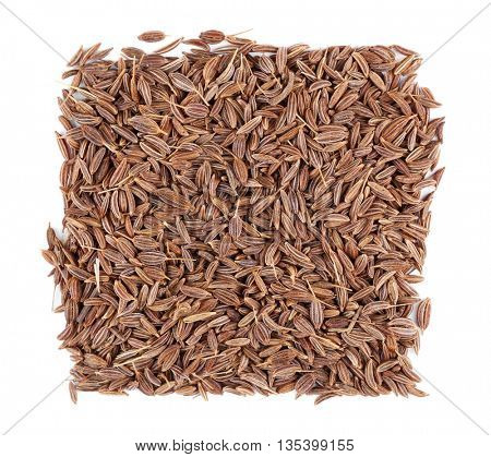 Square of cumin seeds on white background