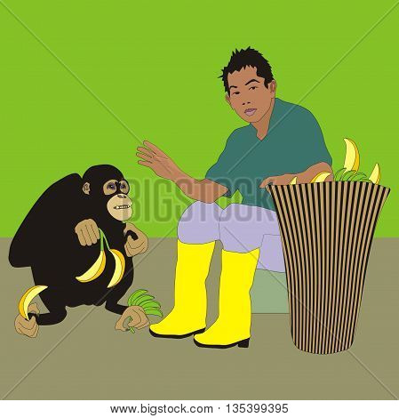 Stuff of Borneo sanctuary feeding monkey with fruits from big basket