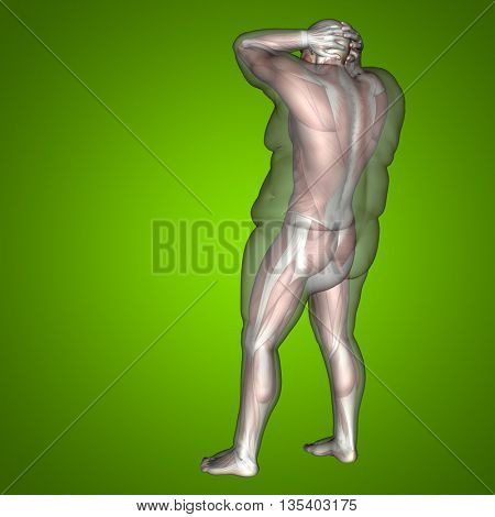 Concept conceptual 3D illustration human anatomy muscle text, green gradient background, metaphor to body, tendon, fit, builder, strong, biological, skinless, shape, muscular, posture, health medical