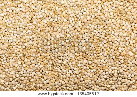 Quinoa outspreaded entire at picture backgrounds closeup.