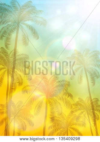 Summer theme with palm trees and bright Sun on yellow and blue background, illustration.