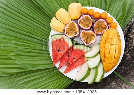 Assortment of sliced tropical fruits on on a background of green palm leaf.
