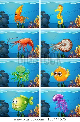 Scenes with sea animals under the sea illustration