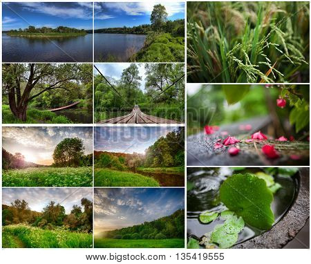 set of summer landscapes with large parts. high resolution