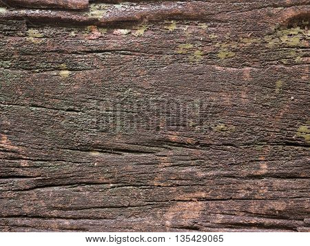 old and moist in wood texture .