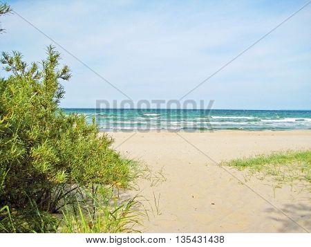 beach access - path through dunes to sandy beach of baltic sea