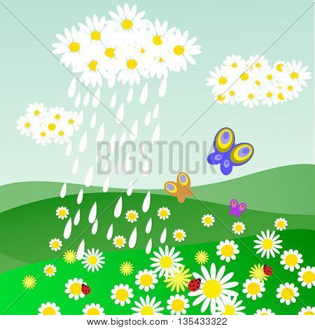 The cloud of daisies with a rain