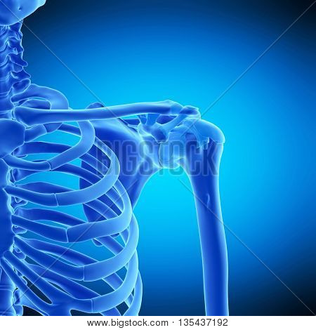 3d rendered, medically accurate illustration of the shoulder ligament