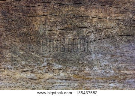 image of wood texture with natural pattern