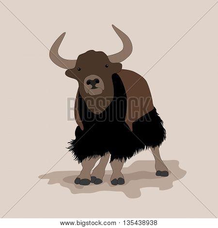 musk ox mountain yak Mountain bull vector illustration