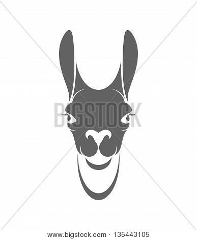 Llama. Isolated head on white background. (EPS)