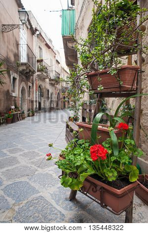 View of one characteristic street in Ortigia the old part of Syracuse with an ornamental wooden ladder and flowered vases