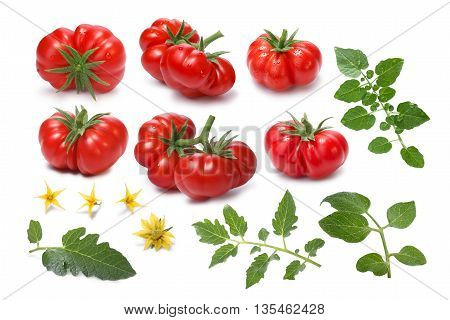 Set Of Ripe Heirloom Tomatoes, Togorific Variety