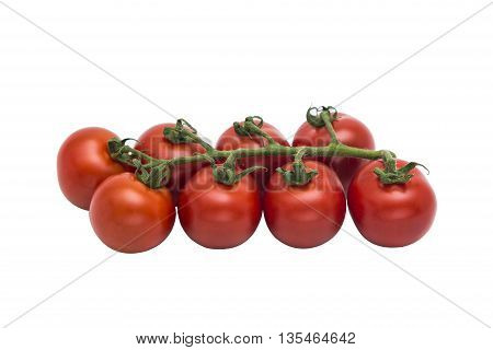 Fresh red glossy tomatoes together in a row on a green branch on isolated background