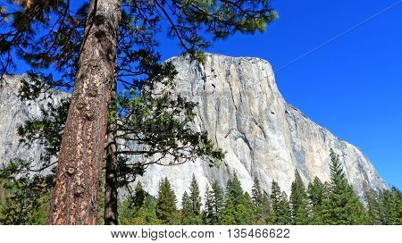 The distinctive rock El Capitan in Yosemite National Park in California, blue sky