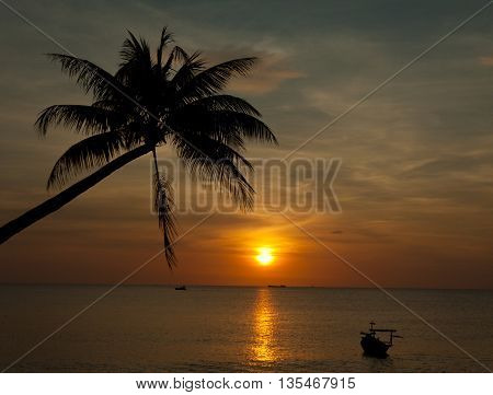 Sandy beach with a boat palm trees at sunset time Phu Quoc Vietnam