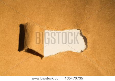 Directly above shot of torn paper of box
