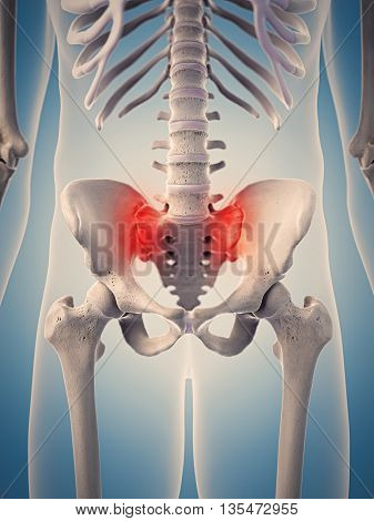 3d rendered, medically accurate 3d illustration of the highlighted human hip