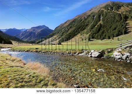 The rough transparent stream quickly runs down. The mountain slopes are covered with thick alpine valley pine forest