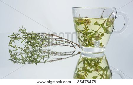 genuine thyme tea.natural herbal teas.completely natural mountain tea