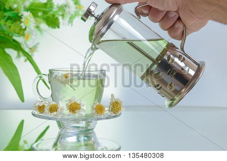 warm and natural brewed chamomile tea.natural herbal teas
