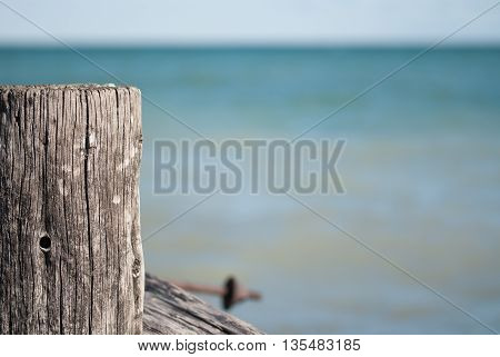 Close up of a piling at the beach on a sunny day