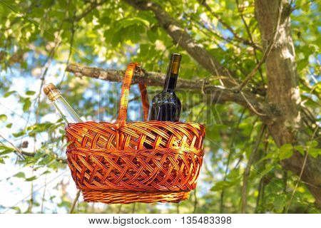 Wicker basket with wine, hanging on a tree branch