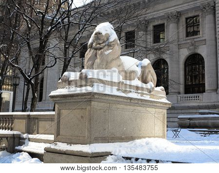 New York Public Library Lion in Winter