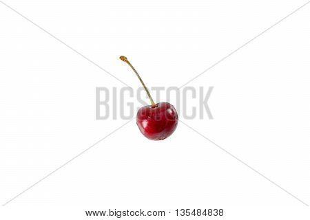 Single sweet and fresh cherry isolated on white background