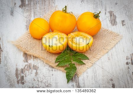 Yellow Tomatoes With Green Leaves In Garden On Sunny Day