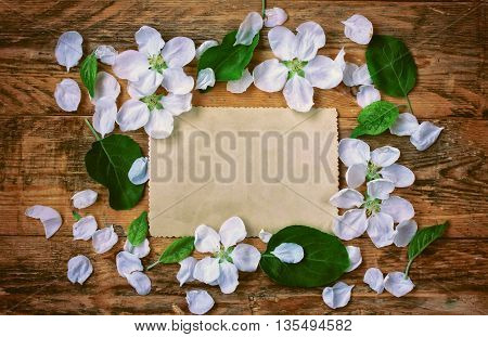 delicate flowers apple petals and paper card lie on the old planks