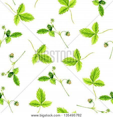 Seamless pattern with watercolor drawing wild strawberry plants with leaves, flowers and berries, background with painted wild herbs, botanical illustration in vintage style, floral ornament