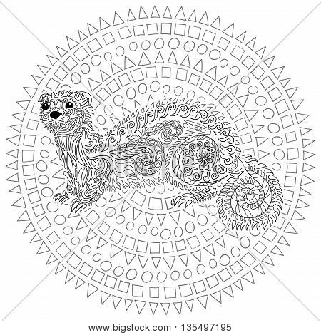 Hand drawn ferret in zen tangle style with high details. Coloring page for anti-stress art therapy. Black white hand drawn zendoodle animal. Sketch for poster, print, t-shirt. Vector illustration.