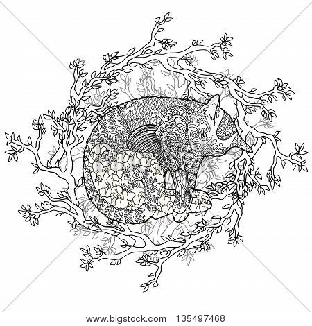 High detail illustration in zen tangle style. Adult coloring page for antistress art therapy. Sleeping catin the nest. Template for t-shirt, tattoo, poster or cover. Vector illustration.