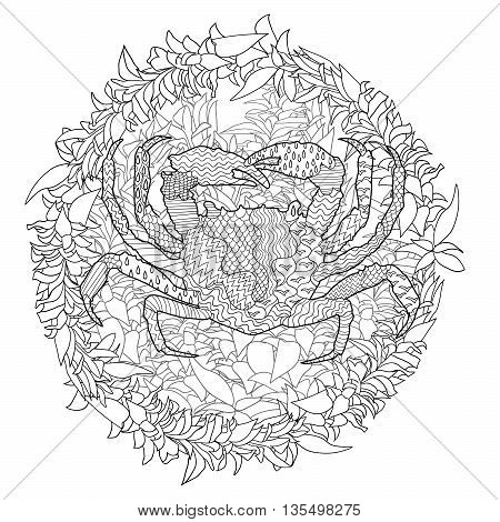 Sea crab with high details. Adult antistress coloring page. Black white hand drawn doodle oceanic animal. Sketch for tattoo, poster, print, t-shirt in tracery style. Vector illustration.