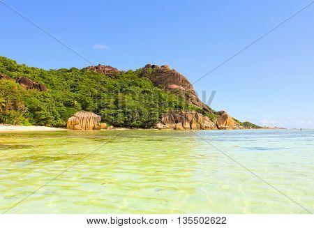 National Park Sunlit Scene