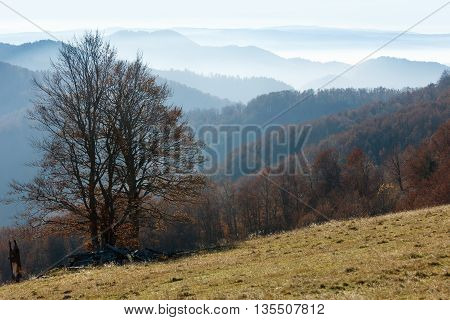 Autumn Misty Mountain Landscape.
