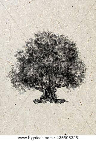 Drawing old tree oak on a beige rice paper. Black silhouette on a beige rice paper.