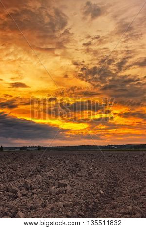 Plowed Field In The Sunset