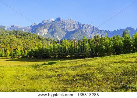 Majestic Mount Kinabalu during beautiful blue  sky.