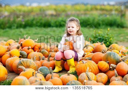 Adorable little funny kid girl having fun with farming on a pumpkin patch. Traditional family festival with children, thanksgiving and halloween concept. Cute farmer.