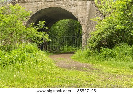 A hiking trail passing through an old railroad concrete arch bridge.