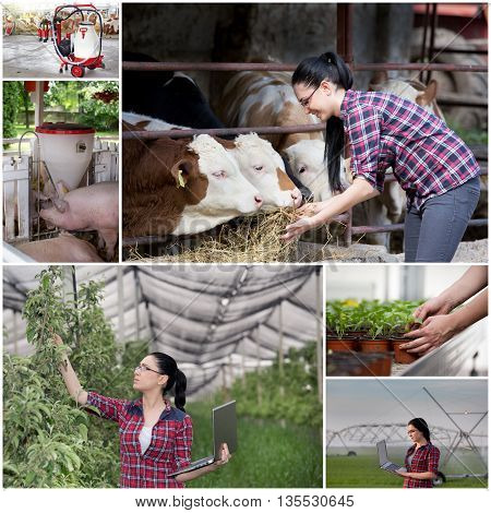 Collage Of Agricultural Industry