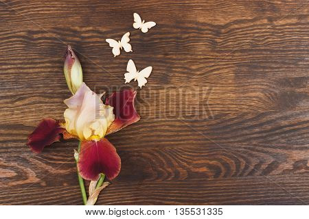 Misty rose irises with decorative butterflies on the wooden background