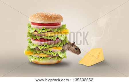 a funny picture. a mouse coming out of a hamburger smell like a piece of cheese
