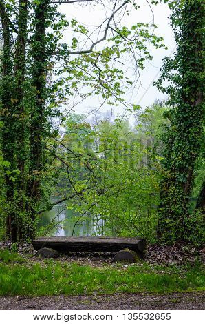 Wooden bench in a forest, Illkirch, France