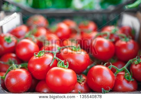 Red Round Tomatoes On Market Stall
